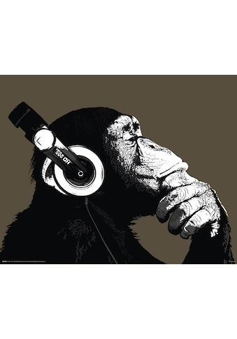 Home affaire Bild »The Chimp« kaufen