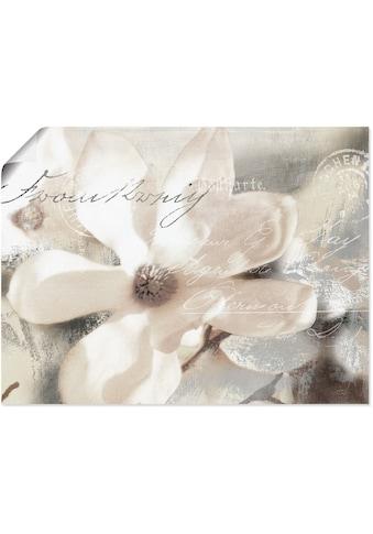 Artland Wandbild »Magnolie_Detail«, Blumenbilder, (1 St.), in vielen Größen &... kaufen