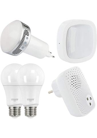 Schwaiger Smart Home Starter Set HOME4YOU »Sicherheit, Google Assistant / Amazon Alexa« kaufen