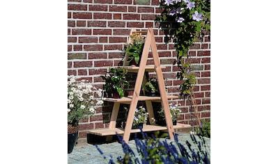 promadino Blumenständer »Blummentreppe«, BxTxH: 101x31x113 cm kaufen