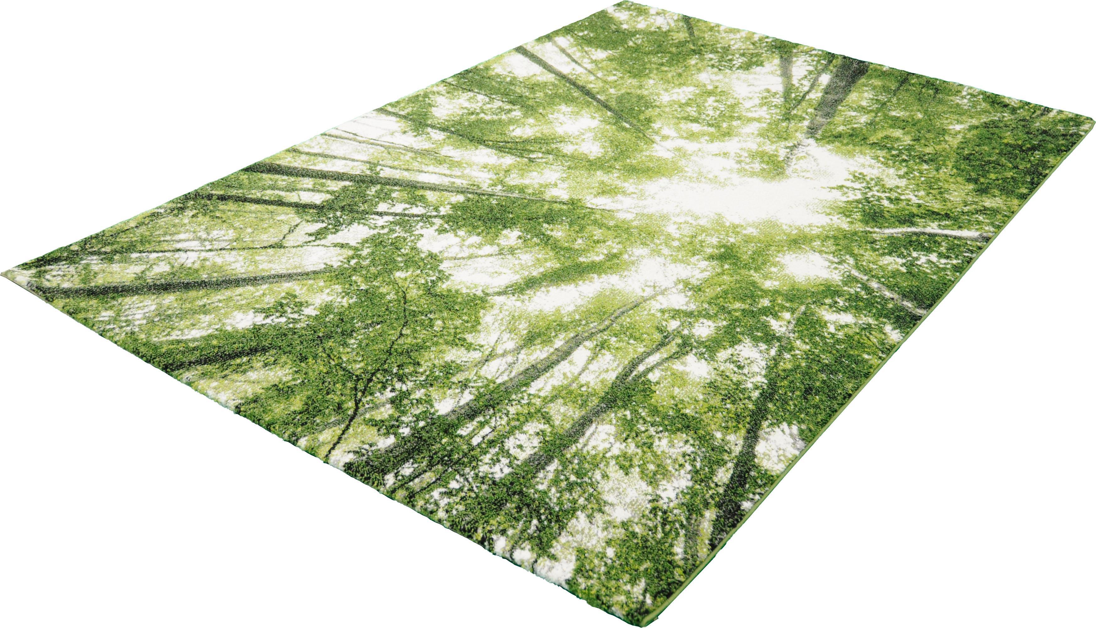 Teppich BELIS BÄUME merinos rechteckig Höhe 13 mm maschinell gewebt