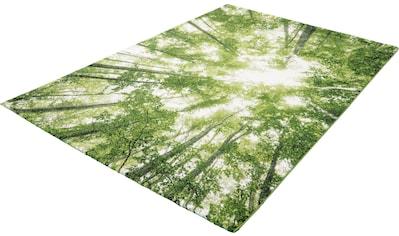 merinos Teppich »BELIS BÄUME«, rechteckig, 13 mm Höhe, Wohnzimmer kaufen