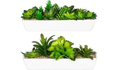 Creativ green Künstliche Zimmerpflanze »Sukkulentenarrangement«, im Keramikkasten, 2er... kaufen