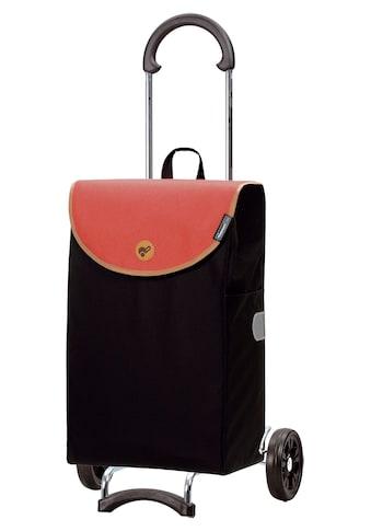 Andersen Einkaufstrolley »Scala Shopper Lova« kaufen