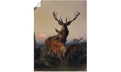Artland Wandbild »Hirsch und ein Reh bei Sonnenuntergang«, Wildtiere, (1 St.), in... kaufen
