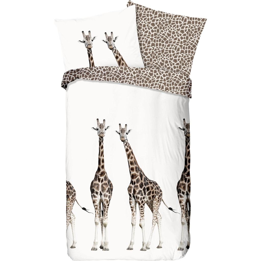 good morning Kinderbettwäsche »Giraffe«, mit Giraffen