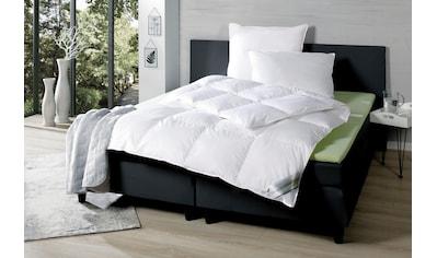 KBT Bettwaren Daunenbettdecke »Betten aus Deutschen Landen«, warm, Füllung 90% Daunen, 10% Federn, Bezug 100% Baumwolle, (1 St.) kaufen