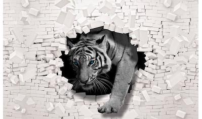 Consalnet Vliestapete »3D Tiger«, verschiedene Motivgrößen, für das Büro oder Wohnzimmer kaufen