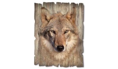 Artland Holzbild »Wolf«, Wildtiere, (1 St.) kaufen