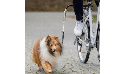 TRIXIE Hundeleine »Biker-Set«, für große Hunde kaufen