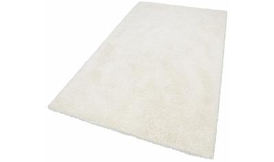 Hochflor - Teppich, »Denver«, merinos, rechteckig, Höhe 50 mm, maschinell gewebt kaufen