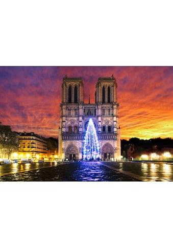 Papermoon Fototapete »Notre Dame Sonnenaufgang«, Vliestapete, hochwertiger Digitaldruck kaufen