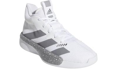 adidas Performance Basketballschuh »PRO NEXT« kaufen
