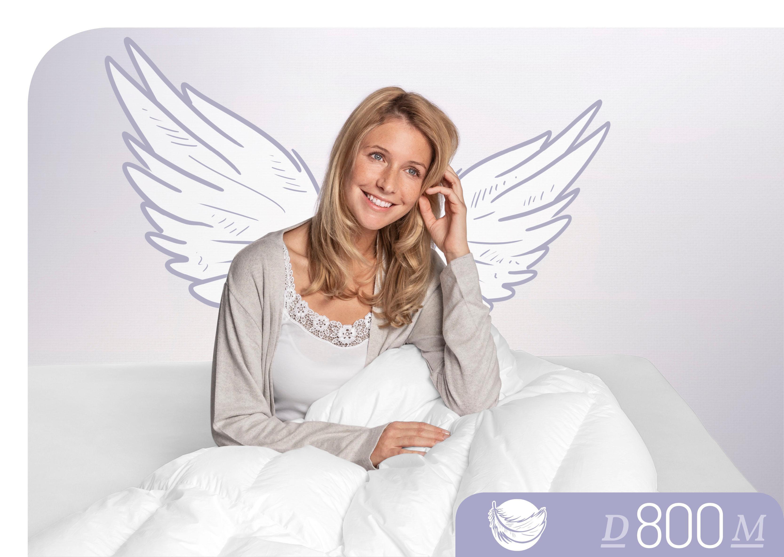 Daunenbettdecke D800 Schlafstil leicht Füllung: 100% Gänsedaunen Bezug: 100% Baumwolle