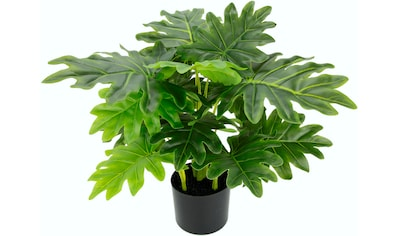 I.GE.A. Kunstpflanze »Philopflanze«, im Kunststofftopf kaufen