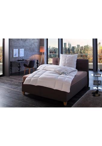 f.a.n. Schlafkomfort Microfaserbettdecke »Antistress«, normal, Füllung Polyester,... kaufen