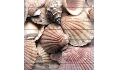 queence Holzbild »Meeres Sammlung«, 40x40 cm kaufen