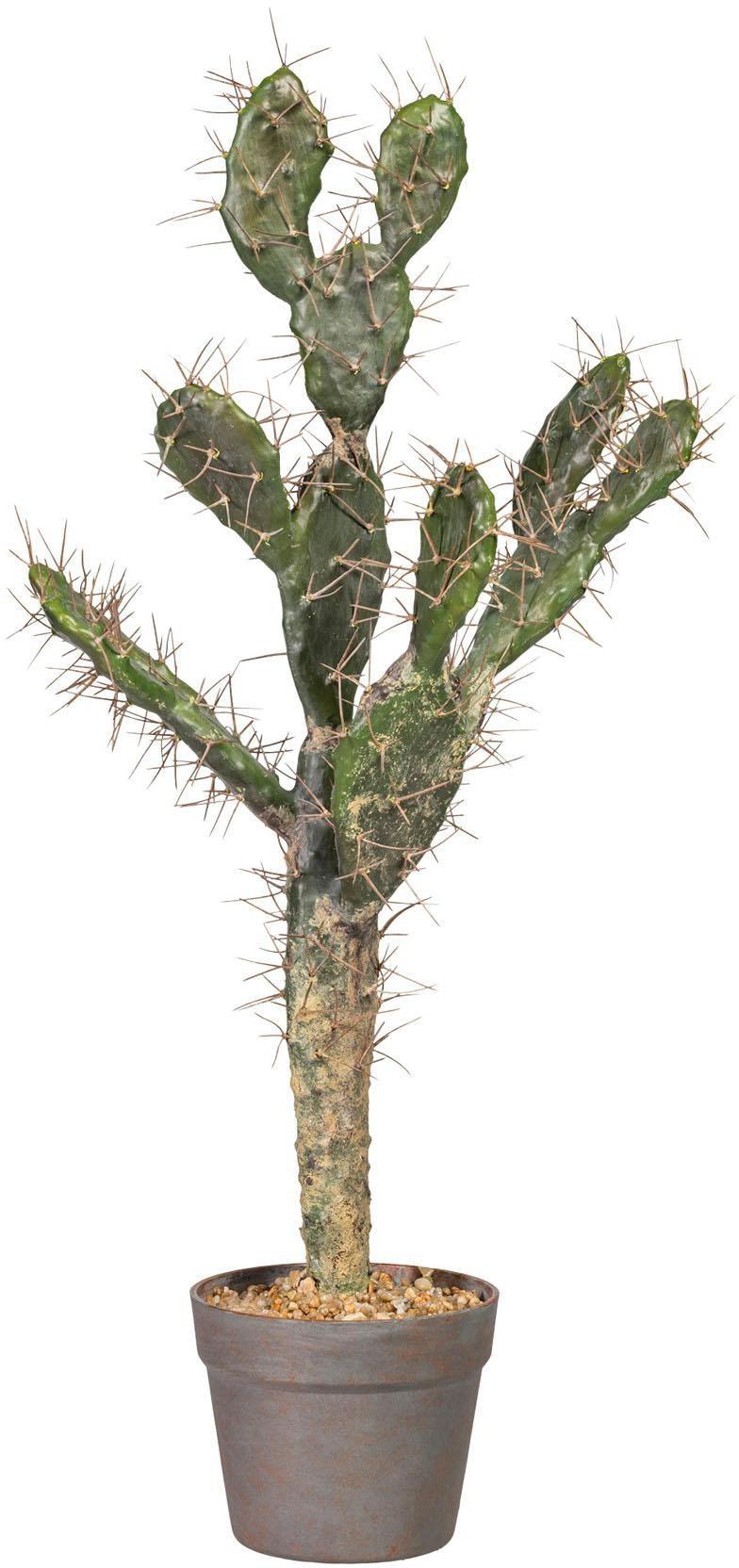 Kunstpflanze Kaktus Opuntie Wohnen/Möbel/Kleinmöbel/Kunstpflanzen/Kunstkakteen