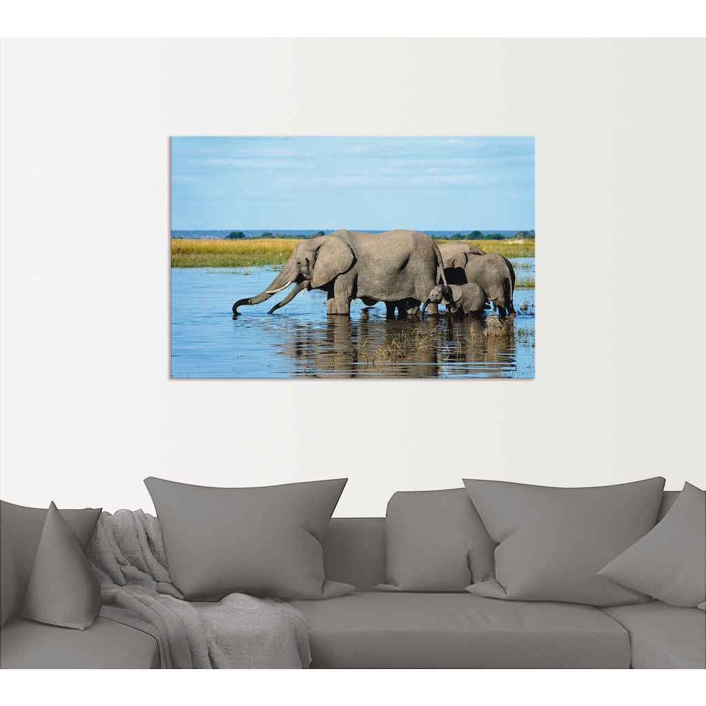 Artland Wandbild »Afrikanische Elefanten im Chobe Fluss«, Wildtiere, (1 St.)
