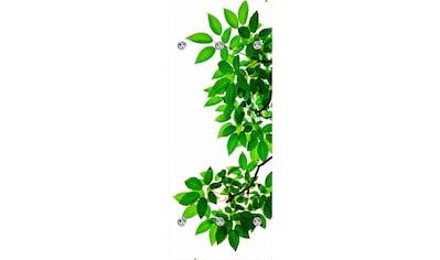 queence Garderobenpaneel »Zweige mit Blättern«, mit 6 Haken, 50 x 120 cm kaufen
