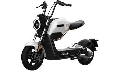Didi THURAU Edition E - Motorroller »Max«, 800 Watt, 45 km/h kaufen