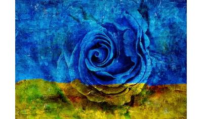 Consalnet Papiertapete »Blau-Gelbe Rose«, floral kaufen