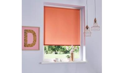my home Seitenzugrollo »THEMSE«, verdunkelnd, energiesparend, ohne Bohren, freihängend, Hitzeschutz kaufen