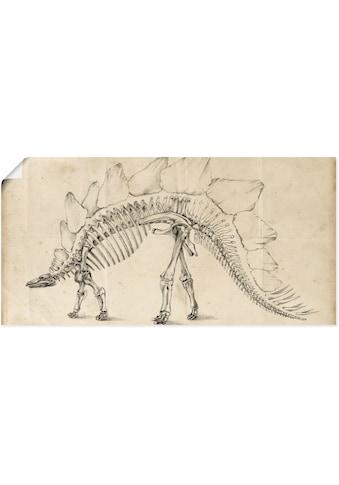Artland Wandbild »Dinosaurier Lehre III«, Dinosaurier, (1 St.), in vielen Größen & Produktarten - Alubild / Outdoorbild für den Außenbereich, Leinwandbild, Poster, Wandaufkleber / Wandtattoo auch für Badezimmer geeignet kaufen