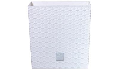 Prosperplast Blumentopf »Rato low«, BxTxH: 26,2x26,2x26,6 cm kaufen