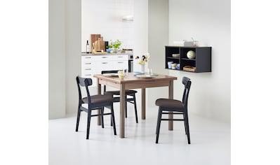 hammel Esstisch »Dinex«, in zwei Breiten, Danish Design kaufen