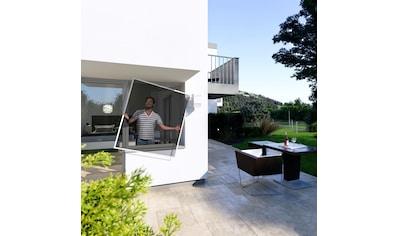 Windhager Insektenschutz-Fenster, BxH: 140x150 cm kaufen