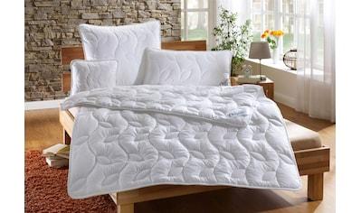 Dreams Kunstfaserbettdecke »Thinsulate«, warm, Bezug 100% Baumwolle, (1 St.), im Winter nicht frieren und im Sommer nicht schwitzen mit der 3M Thinsulate Faserfüllung kaufen
