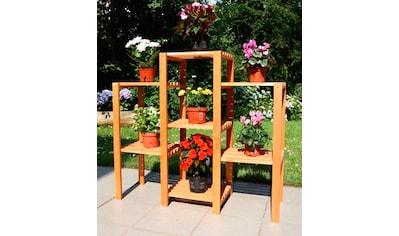 promadino Blumenständer »Blummentreppe Etagerie«, BxTxH: 98x32x88 cm kaufen