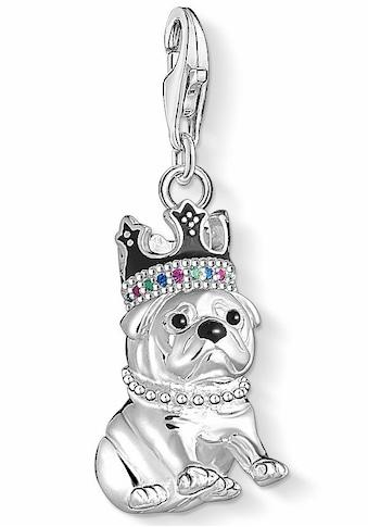 THOMAS SABO Charm - Einhänger »Bulldogge mit Krone, 1510 - 497 - 21« kaufen