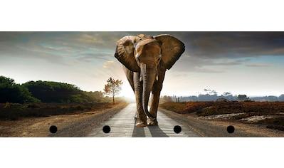 Spiegelprofi GmbH Bild mit Rahmen »Street elephant«, (1 St.) kaufen