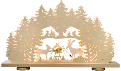 Weigla LED Schwibbogen »Futterkrippe«, 1 tlg., 10-flammig kaufen