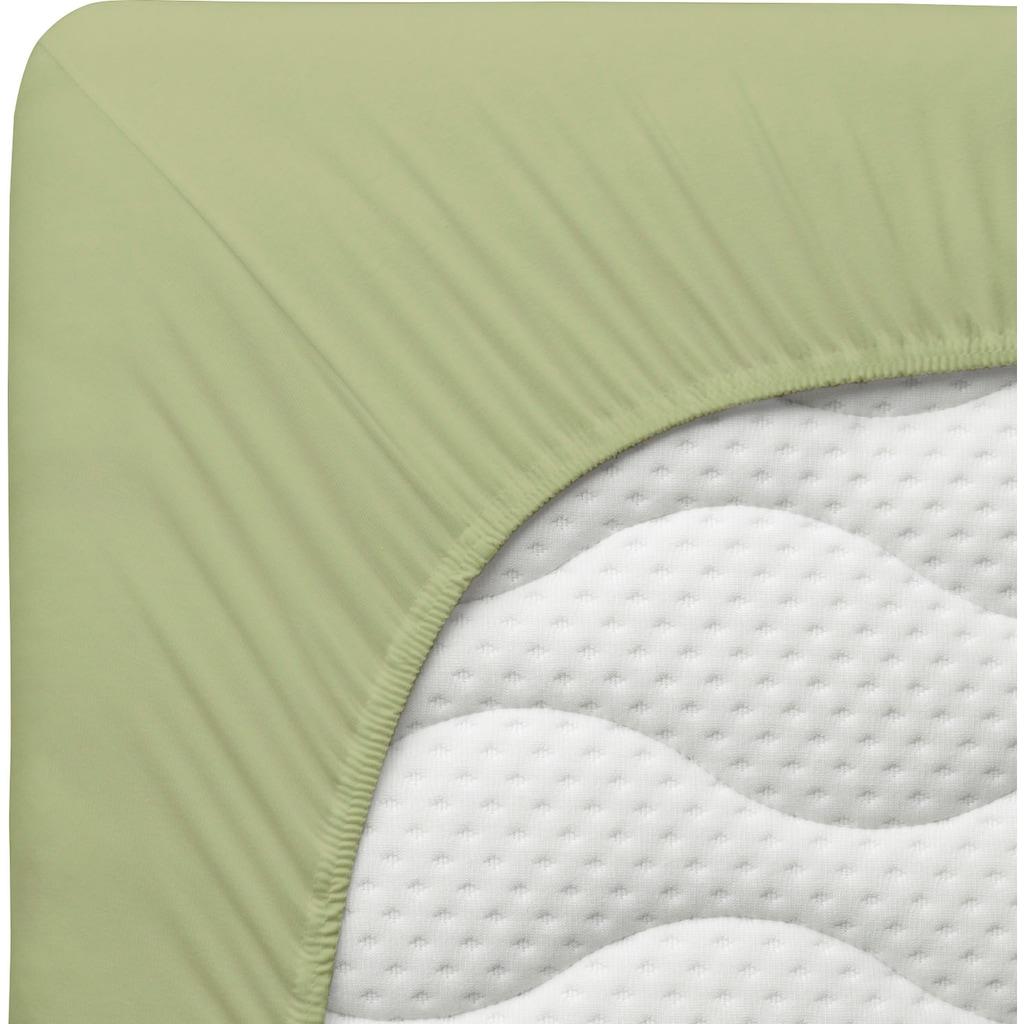 Schlafgut Spannbettlaken »Organic-Cotton-Jersey«, aus rein biologischem Anbau
