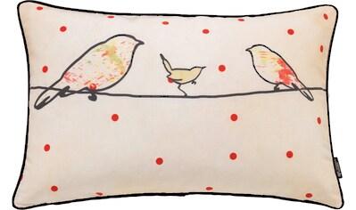 emotion textiles Kissenhülle »Crazy Birds«, (1 St.) kaufen