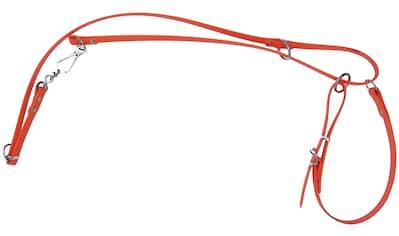HEIM Hundeleine »Biothane«, Länge: 45 cm, in 2 Farben kaufen