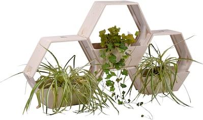 DOBAR Set: Pflanzkasten »Bambus - Faser«, BxTxH: 50x21x44,5 cm, 3 Stück kaufen