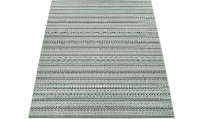 Teppich, »Ostende 535«, Paco Home, rechteckig, Höhe 5 mm, maschinell gewebt kaufen
