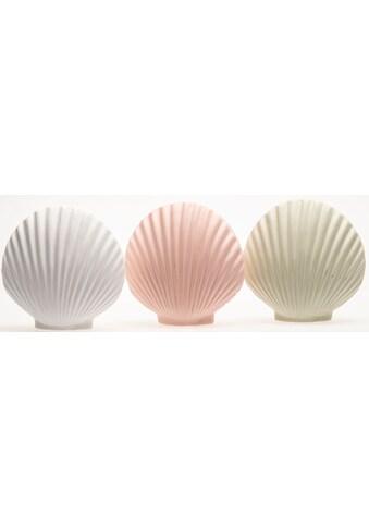 VALENTINO Wohnideen Dekoobjekt »Muschel Callista«, aus Keramik kaufen