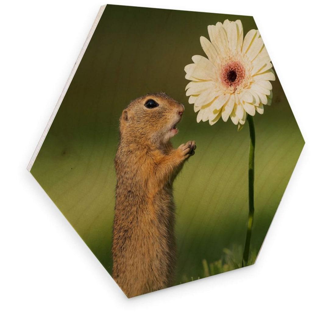 Wall-Art Holzbild »Eichhörnchen Holzbild Blumen«, (1 St.)