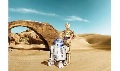 KOMAR Set: Fototapete »Star Wars Lost Droids«, Ausgezeichnet lichtbeständig kaufen