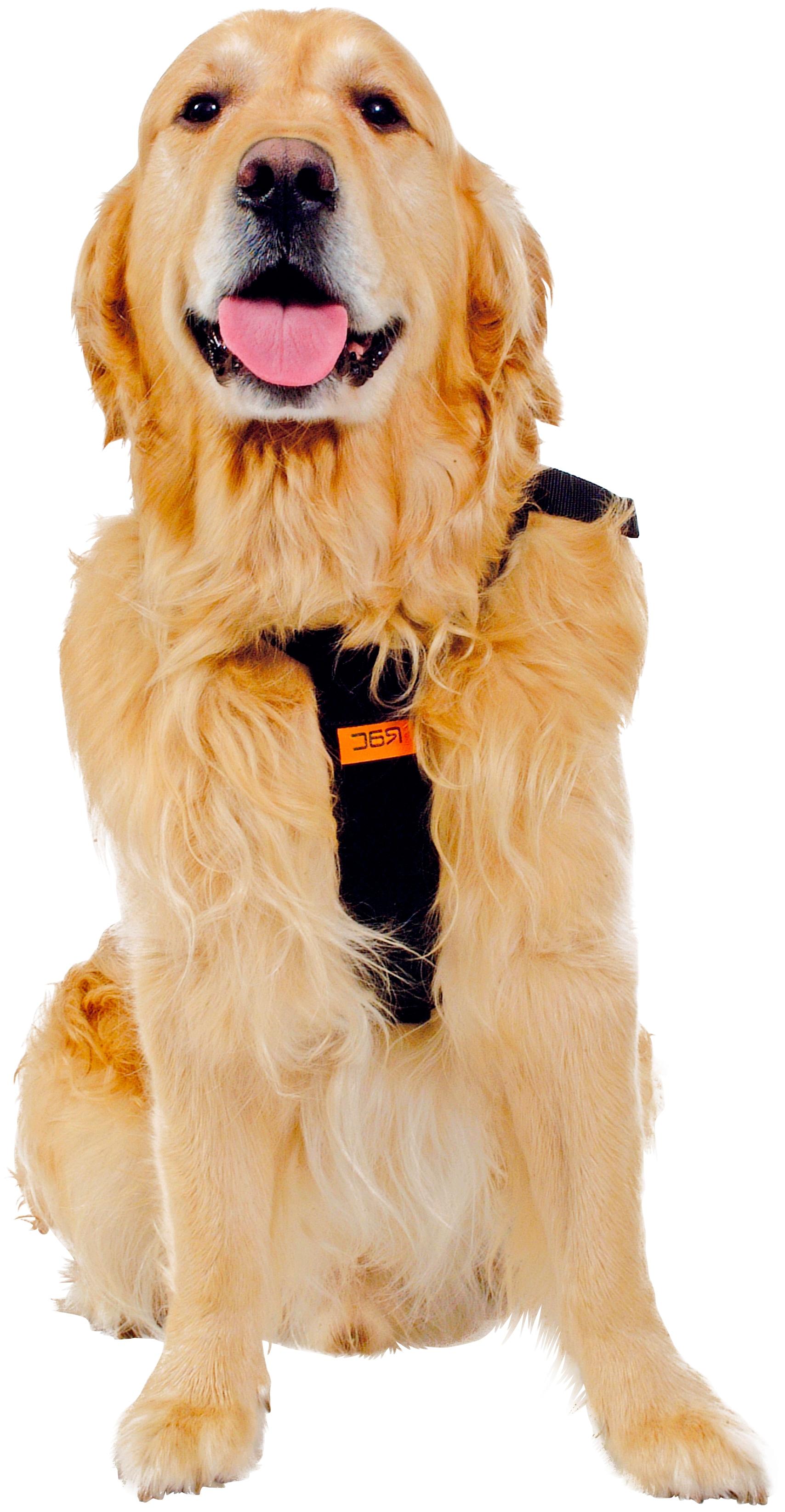 HEIM Hunde-Sicherheitsgeschirr, Polyester schwarz Hundetransport Hund Tierbedarf Hunde-Sicherheitsgeschirr