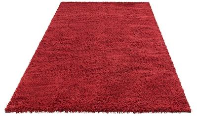 Hochflor - Teppich, »Kartal«, Theko Exklusiv, rechteckig, Höhe 30 mm, handgewebt kaufen
