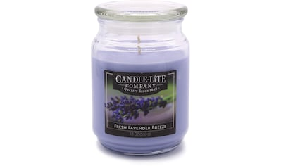 "Candle - lite™ Duftkerze ""Everyday  -  Fresh Lavender Breeze"", (1 - tlg.) kaufen"