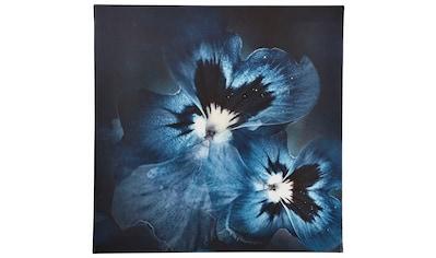 Guido Maria Kretschmer Home&Living Leinwandbild »Viola Flower«, gerahmt, Keilrahmen kaufen
