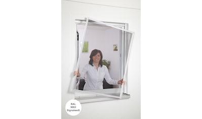 hecht international Insektenschutz-Fenster »Basic« kaufen
