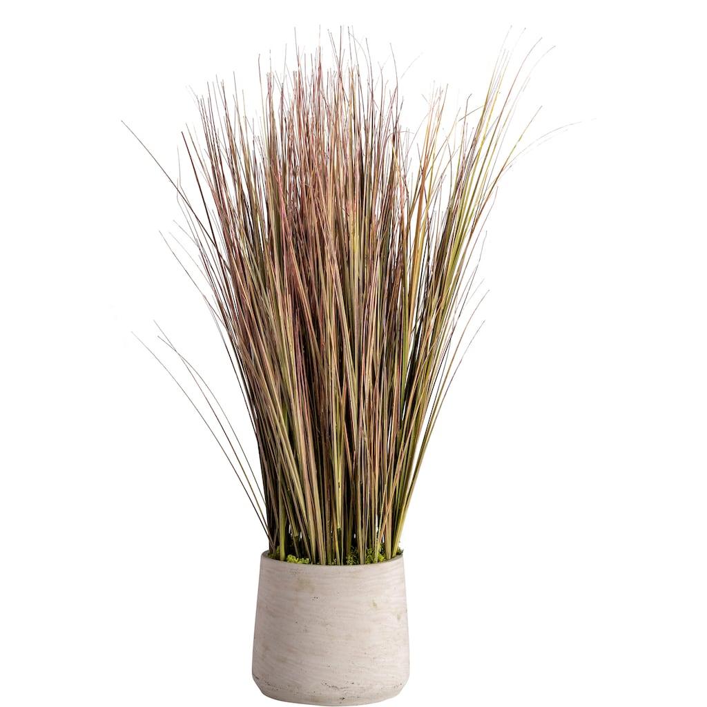 Blütenwerk Künstliche Zimmerpflanze »Sylt«, im Fiberstone-Übertopf